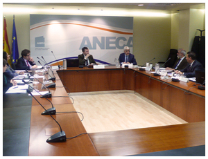 ANECA Governing Council